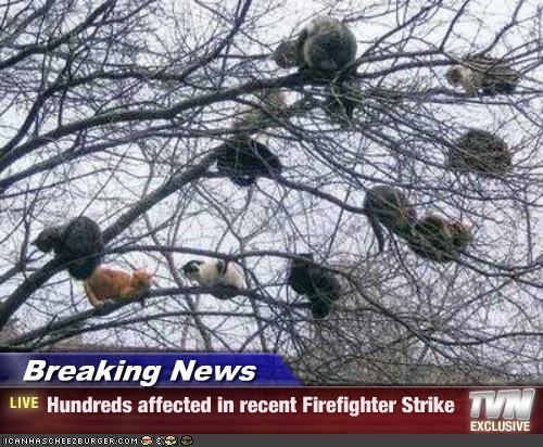 muchos-son-los-afectados-por-la-huelga-de-bomberos-huelga